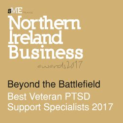 Beyond the Battlefield receives SME News Award